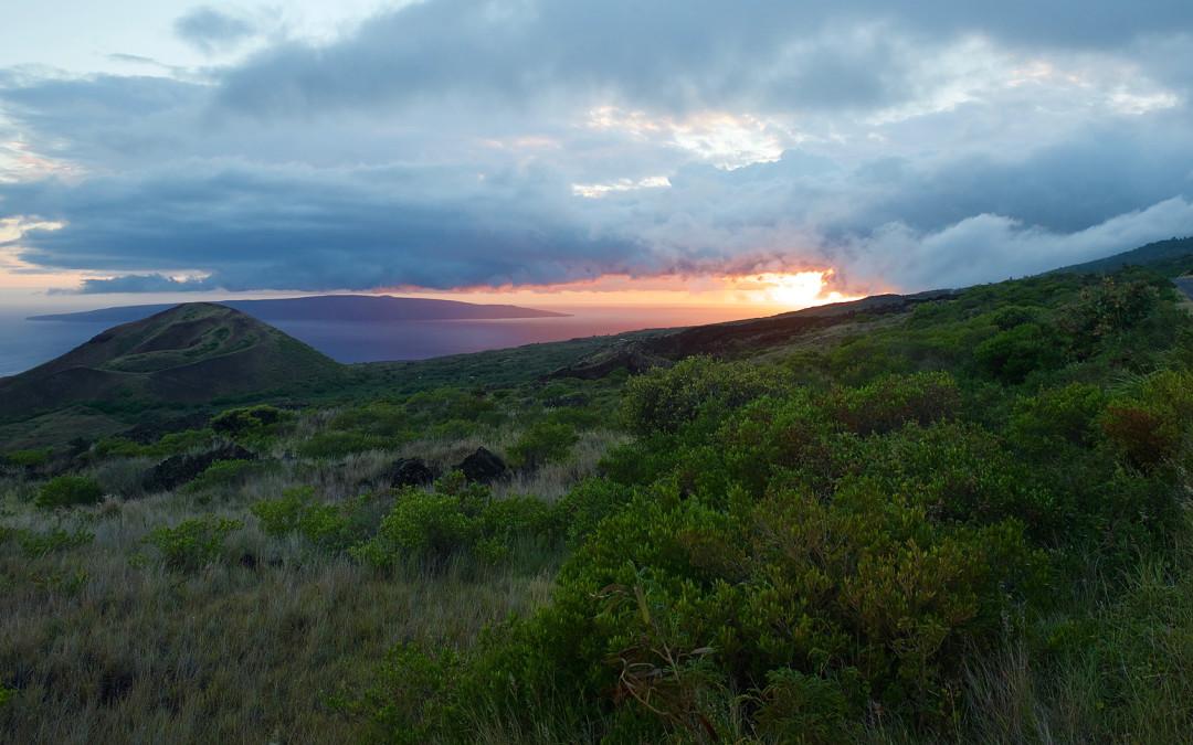 """Hawaii, the """"Best Island"""": Maui"""